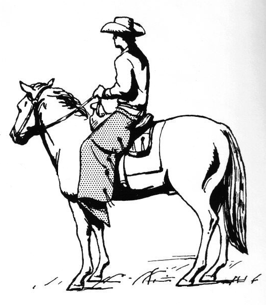File Cowboy On A Horse Wearing Chaps 002 Png The Work Of