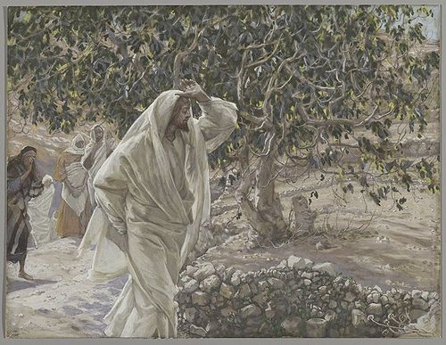 The Accursed Fig Tree (Le figuier maudit)Matthew 21:18-22