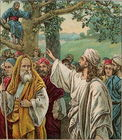 Bartimaeus and Zacchaeus-Luke 18 35 - 19 10a.jpg